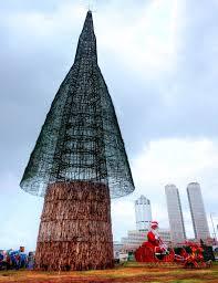 Sri Lankan Christmas Tree