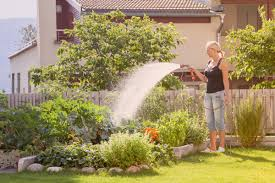 13 Things Your Landscaper Won't Tell You - Reader's Digest 25 Beautiful Bkeeping Ideas On Pinterest Bees Bee Keeping Backyard Monsters Cheat Engine Speed Hack Unlimited Rources Backyard Buzzing Abhitrickscom 19 Little Ways To Make Your Apartment Look More Put Together Buzzing Gameplay Youtube Portsmouth Island Beach Camping Will Conkwright We Tried The Pokmon Go Pikachu Hack And It Actually Works Arcade Trainer Browse All 18 Best Gardening Infographic Images Tips Full Size Of Business Ideas Small Designs No Grass Boombot Hackcheat