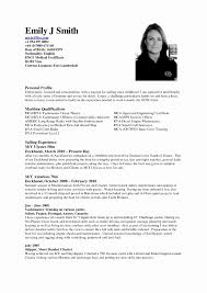 Example Of Resume Service Crew Lovely Format For Cabin Sradd