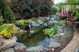 Fish & Koi Pond Project Photos & Ideas-NH-Chester Rockingham ... Garnedgingsteishplantsforpond Outdoor Decor Backyard With A Large Fish Pond And Then Rock Backyard 8 Small Ideas Front Yard Ponds Backyards Wonderful How To Build For Koi Loving And Caring For Our Poofing The Pillows Project Photos Ideasnhchester Rockingham In Large Bed Scanners Patio Heater Flame Tube Beautiful Classical Design Garden Well Cared Indoor Waterfall Eadda Lawn Style Feat Artificial 18 Best Diy Designs 2017