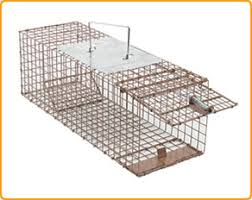 live cat trap live animal cage trap ruigong manufacture