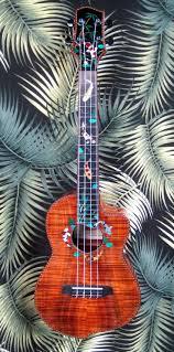 Eddie Vedder No Ceiling Ukulele Chords by 150 Best Ukulele Images On Pinterest Musical Instruments