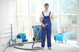 Absolute Carpet Cleaning: Portland, Hillsboro, Beaverton, OR ...