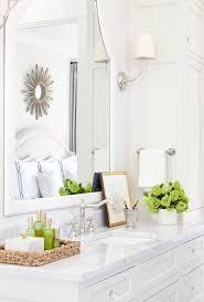 Best Plant For Bathroom by 25 Best Bathroom Counter Decor Ideas On Pinterest Bathroom