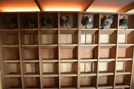 100 Pigeon Coop Plans Free Pigeon Loft Plans Loft Free Submited
