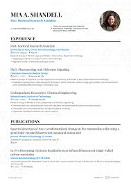 Professional CV & Resume Builder Pricing | Enhancv 16 Most Creative Rumes Weve Ever Seen Financial Post How To Make Resume Online Top 10 Websites To Create Free Worknrby Design A Creative Market Blog For Job First With Example Sample 11 Steps Writing The Perfect Topresume Cv Examples And Templates Studentjob Uk What Your Should Look Like In 2019 Money Accounting Monstercom By Real People Student Summer Microsoft Word With 3 Rumes Write Beginners Guide Novorsum
