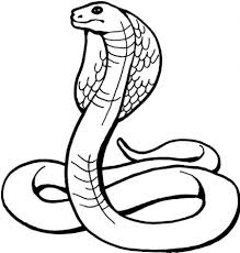 Printable Snake Coloring Pages And Page