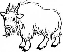 Goat Hairy Mountain Colouring Page