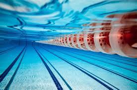 Olympic Swimming Pool Underwater