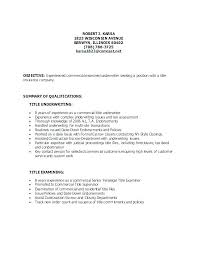 Good Titles For Resumes Resume Title Example Examples