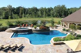 Raised Spa, Sheer Descent Waterfall, And Fountain | Aloha Pools ... Houston Pool Designs Gallery By Blue Science Ideas Patio Remarkable Best Backyard Fence Ideas Design Lover Privacy Exceptional Tanning Hutchinson Mn Part 8 Stupendous Bedroom Knockout Building Something Similar Now But A Little Bigger I Love My Job Rockwall Dallas Photo Outdoor Living Freeform With Ledge South Barrington Youtube Creative Retreat Christsen Concrete Products Exquisite For Dogs Amazing Large And Beautiful This Is The Lower Pool Shape Freeform 89 Pimeter Feet