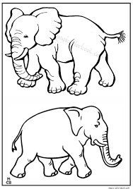 Elephant Animal Coloring Book Pages