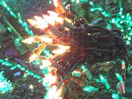 Bellevue Singing Christmas Tree by Joe U0027s U0026 Julia U0027s Adventures Garden D U0027lights