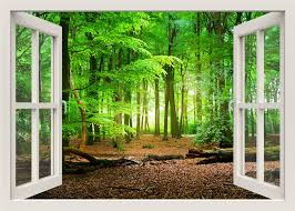 forest wall decal 3d window wall decal window frame nature