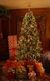 Miller Christmas Tree Farm Ct by Decorate For A Traditional Christmas