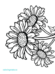 Coloring Pages Of Sunflowers Simple Sunflower Page Lovely Download