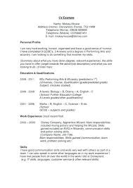 Profile On A Resume Example Superb Examples Entry Level