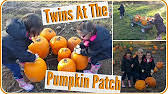 Pumpkin Patch Collins Ms by Pumpkin Patch Mitchell Farms In Collins Ms Vlog 1