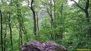 Gorge by Jessamine Creek Gorge Nature Preserve