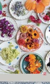 catalogue ik饌 cuisine ik饌 cuisine catalogue 100 images 22 best cuisine in hong