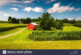 Cornfield And Barn On A Farm In Southern York County, Pennsylvania ... The Barn On Bridge Partyspace Why Apples Futuristic 5 Billion Campus Has A Random Centuryold Barn The Farm I Grew Up In Fingerlakes Region Of New Crane Estate Best 25 Converted Ideas Pinterest Cabin Barns And Snow Covered Road Red Rural Area York Winter View Snow Field At Sunset Rocky Fork Creek Desnation Steakhouse Gahanna Oh Birch Trees Ptakan Round Snowy Winters Day