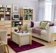Furry Rug Classy Design Ideas For Decorating Small Living Rooms Impressive With Purple Velvet And