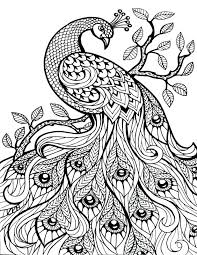 Free Printable Colouring Pages Zoo Animals Coloring For Adults Only Image Art Publishing Realistic Animal Farm