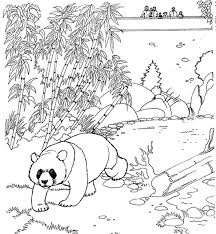 Zoo Panda Free Printable Animal Coloring Pages