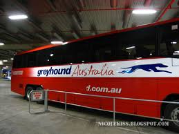 Do Greyhound Australia Buses Have Toilets by Arriving In Sydney Pubbing U0026 Malaysia Fest Nicolekiss Travel