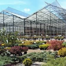 Petitti Garden Center Bainbridge Garden Centers