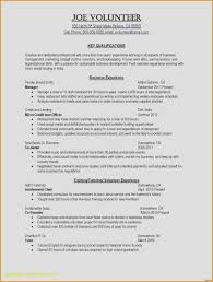 Resume Summary For Customer Service Fresh Sample Information