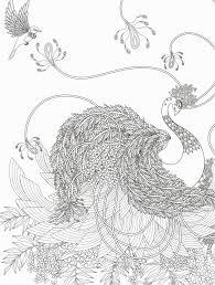 Dessin De Papillon A Imprimer Gratuit Dernier Coloriage Chenille