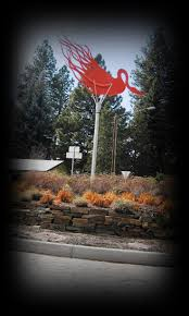 Dd Pumpkin Patch Terrebonne Oregon by 18 Best Bend Oregon Images Images On Pinterest Central Oregon
