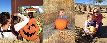 Pumpkin Patches In Bakersfield Ca by Pumpkin Patch At Sz Ranch Hay Rides Tri Tip Bbq