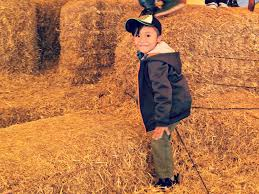 Bengtson Pumpkin Farm Lockport by Fall Fun At Konow U0027s Corn Maze O The Places We Go
