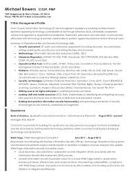 Curriculum Vitae Examples For Information Technology