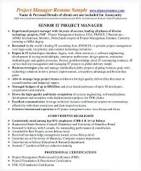 IT Entry Level Project Management Resume