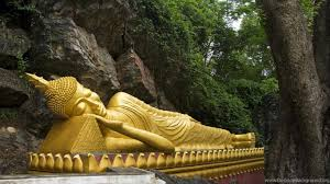 Buddha Wallpapers HD Best Collection Of Gautam Desktop Background