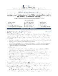 Digital Marketing Executive Page Resume Example