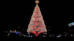 Barcana Christmas Trees by Catchy Collections Of Christmas Tree In The City Fabulous Homes