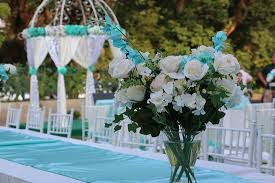Tiffany Blue Garden Wedding Themed Decoration Picture of De