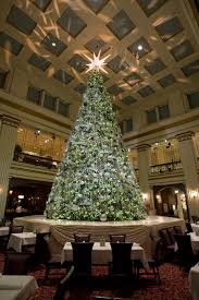 Christmas Tree Types Artificial by 100 Christmas Trees Chicago First Family Lights National