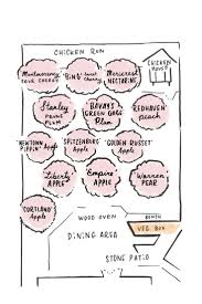 Best 25+ Orchard Design Ideas On Pinterest   Small Garden Orchard ... Backyards Wonderful Backyard Orchard Design 100 Fruit Tree Layout Stardew Valley Let U0027s Feed The Birds Swing Seat Bird Feeder From The Fresh New 3 Bedroom Homes In Hills Irvine Pacific Planning A Small Farm Home Permaculture Pinterest Acre Old Beach Cottage Rental Small Home Decoration Ideas Top Pretty A Garden Interesting With Beautiful Interior Orchardhome Victory Vegetable And Aloinfo Aloinfo Wikimedia Foundation Report July Blog Program Evaluation Bldup 26 Peach Road