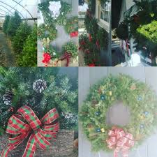 Miller Christmas Tree Farm Ct by Blossoming Acres Home Facebook