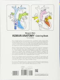 Human Anatomy Coloring Book Dover Childrens Science Books Margaret Matt Joe Ziemian 0000486241386 Amazon