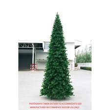Christmas Tree Types Canada by Cheap Pencil Christmas Trees Artificial Rainforest Islands Ferry