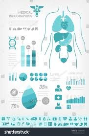 Vector Medical Infographic Poster Template For Design Includes Elements
