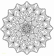 Dessins Fleurs Noir Et Blanc 35 Luxe Dessin De Papillon Noir Et