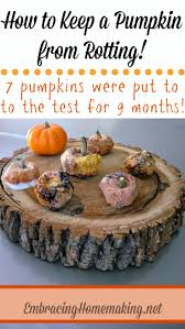 Best Way To Carve A Pumpkin Lid by How To Keep A Pumpkin From Rotting Embracing Homemaking