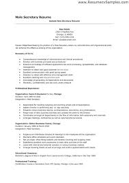 Transform Sample Resume Objective Secretary Position With Examples Of Resumes